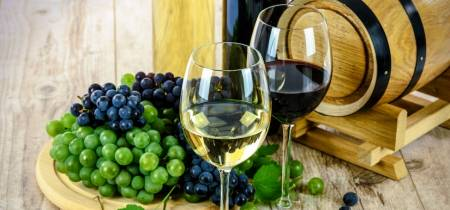 Raising a Glass to MSc Programs in Food and Wine